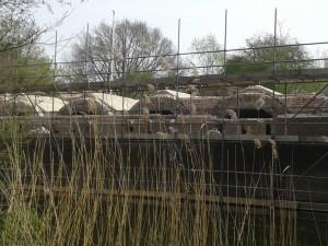 De restauratie van fort Lunet IV is in volle gang. (31 maart 2014)