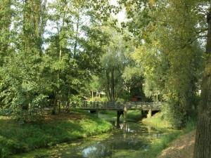 Park De Koppel Wim 043 klein