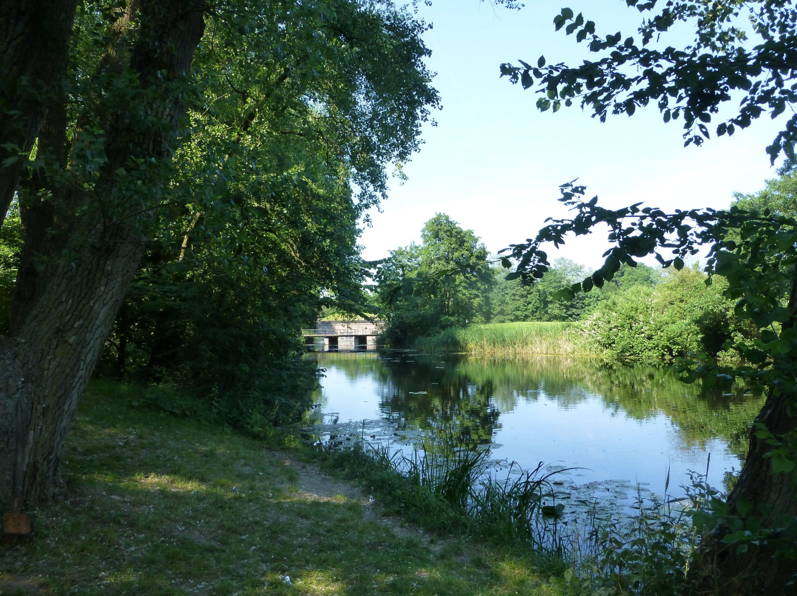 Project Lunettenpark